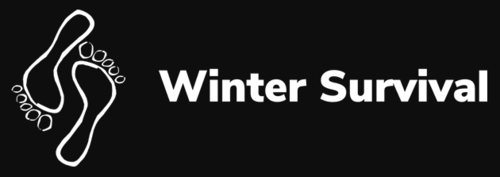 winter_survival_logo